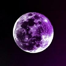 Moonlight Luna12