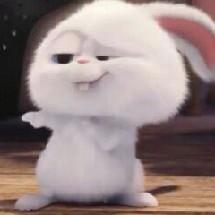 Gummy Bunny