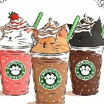 ♪KITTYs in a CUP♪ ♬