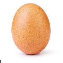 can_an_egg_beat_UwU