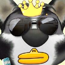 DuckGod