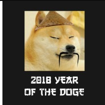 2018 year of the doge