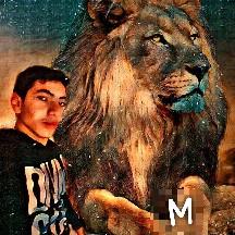 M Lightning