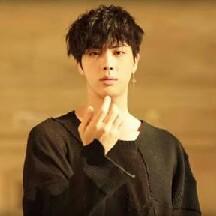 BTS JiN Biased ♥